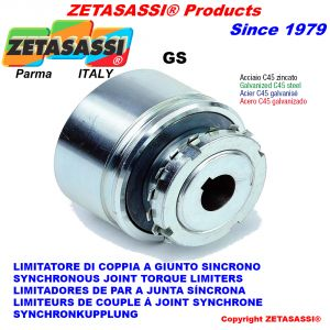 "Synchronous joint torque limiters ""GS"""