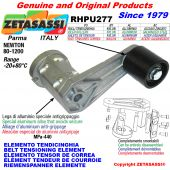 ELEMENTO TENDICINGHIA RHPU277 con rullo tendicinghia Newton80:1200