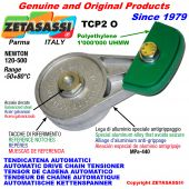 AUTOMATISCHE DREH KETTENSPANNER TCP2 mit Kettengleiter Ovalkopf  Newton120:500