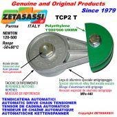 TENSOR DE CADENA AUTOMÁTICO ROTATIVO TCP2 patin tensor cadena cabeza redonda Newton120:500