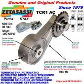 TENDICATENA ROTANTE TCR1AC con pignone tendicatena AC Newton50:180
