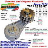 BRAS TENDEUR DE CHAÎNE TCR1 avec pignon tendeur RS RD RT Newton50:180