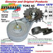 BRAS TENDEUR DE CHAÎNE TCR2AC avec pignon tendeur AC Newton120:500