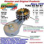 AUTOMATISCHE DREH KETTENSPANNER TCR2 mit Kettenräder und KettenRadsätze RS RD RT Newton120:500