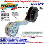 AUTOMATIC ARM BELT TENSIONER TR1PUG with rim pulley Newton50:200-50:210-30:175