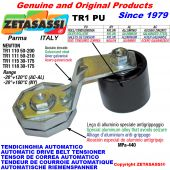 TENDICINGHIA ROTANTE TR1PU con rullo tendicinghia Newton50:200-50:210-30:175