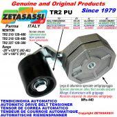 BRAS TENDEUR AUTOMATIQUE DE COURROIE TR2PU avec galet de tension Newton120:480-120:380