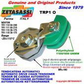 BRAS TENDEUR AUTOMATIQUE DE CHAÎNE TRP1 avec patin tendeur de chaîne tête ovale Newton50:200-50:210-30:175