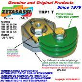 BRAS TENDEUR AUTOMATIQUE DE CHAÎNE TRP1 avec patin tendeur de chaîne tête ronde Newton50:200-50:210-30:175