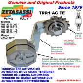AUTOMATIC ARM CHAIN TENSIONER TRR1ACTE with hardened idler sprocket ACTE Newton50:200-50:210-30:175
