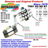 TENSOR DE CADENA ROTATIVO TRR1 con piñon tensor RS RD RT Newton50:200-50:210-30:175