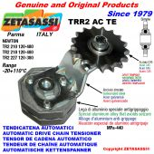 AUTOMATIC ARM CHAIN TENSIONER TRR2ACTE with hardened idler sprocket ACTE Newton120:480-120:380