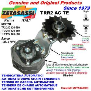 AUTOMATISCHE SPANNARM FÜR KETTE TRR2ACTE mit Zahnkettenrad ACTE Newton120:480-120:380